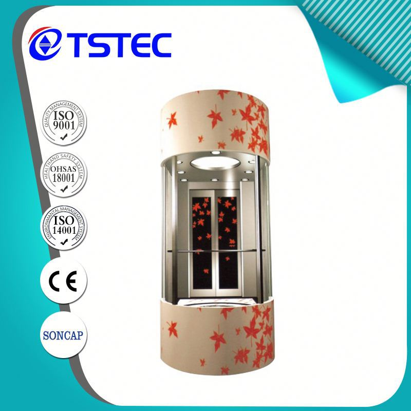 wholesale China Manufacturer outdoor elevator price WIth CE
