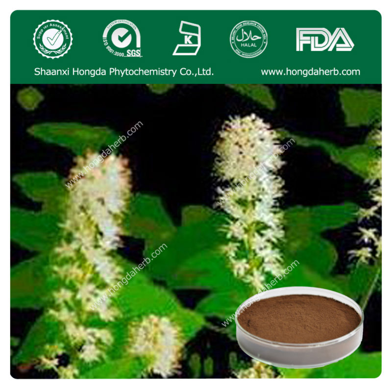 100% Natural Black Cohosh Extract 1.5% Triterpene Glycosides (HPLC)