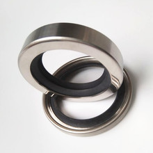 Stainless Steel Dual PTFE Lip Rotary Shaft Oil Seals For Compressors