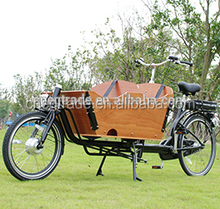 Classic electric cargo bike/electric bicycle for family use