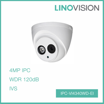 4MP HD WDR Build-in Mic Network IR Intelligent Mini Dome IP CCTV Camera
