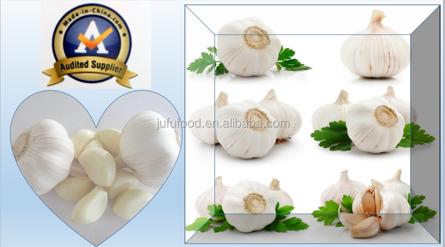 pure white garlics / garlic seeds