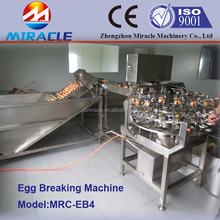 Liquid egg process plant, egg breakers and pasteurizer machinery