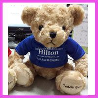 30CM plush teddy bear with cloth