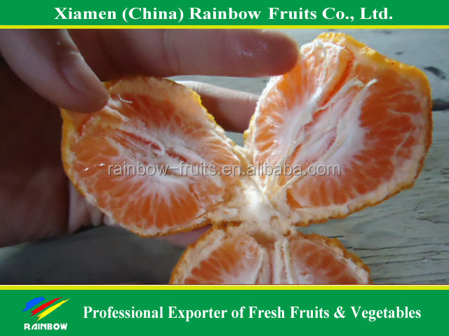 fresh fruits supplier of Mandarin orange kino