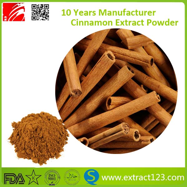 ceylon cinnamon bark extract powder price