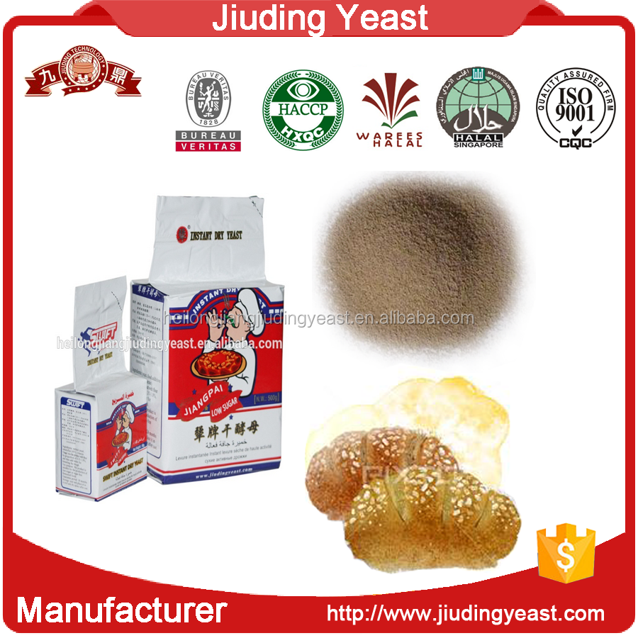 BV Certificate 5kg instant baking yeast powder for bread manufacturer