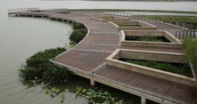 Top Qality With Best Price For Outdoor Eco Forest Bamboo Flooring