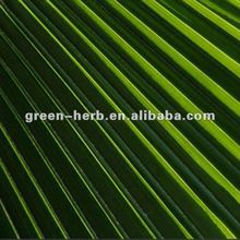 High Quality Saw Palmetto Plant Extract