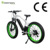 Japanese Fat Tire Electric Bike Battery 36v 10ah