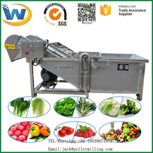 Automatic high quality GMJY-2000 foam model vegetable and fruit washing machine