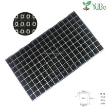High quality 144 cells black plastic seedling tray for vegetable nursery
