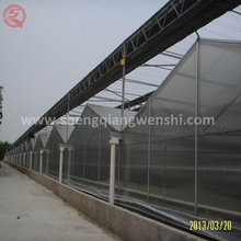 China supplier PC sheet greenhouse with saw tooth