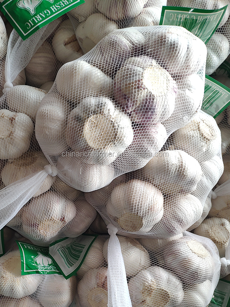 China Natural Fresh White Garlic 5.0cm Price