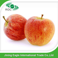 MY 2016 china new fresh fruits red delicious fuji apples