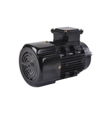 High efficiency <strong>Y</strong> series 220v <strong>3</strong> <strong>phase</strong> 175 kw induction industrial ac pump fan <strong>motor</strong> 100hp 300w electric vehicle for fan and pump
