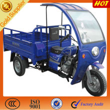 Good model distinctive tricycle for 3 wheeler/ cargo three wheeled motorcycle on sale
