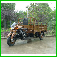 2015 China Hot Sale Adult Tricycle/ Three Wheel Cargo Motorcycle