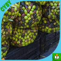 the cherry orchard net/the cherry orchard net grapes orchard/cherry plantation bird protection netting