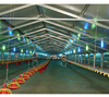 /product-detail/chicken-poultry-farm-shed-design-with-light-frame-steel-structure-62020629781.html