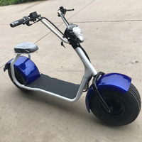 "Mag Cool 1000w motor 80km 800W Electric motorcycle with pedals Hot Sale New Design 20"" Fashionable Aluminium Alloy Foldable"