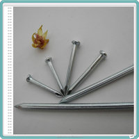 Galvanized Stainless Steel Hardened Concrete Nail