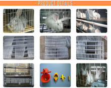 wire rabbit cage for poultry farm