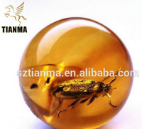 Eco-froendly Real Insect Globe Paper For Toy