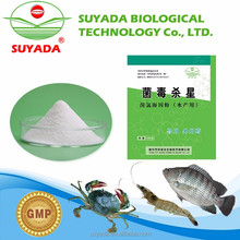 factory provide sterilization bacteria used in aquaculture