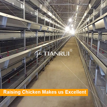 High quality Top Selling Chicken Layer Cage For Small Chicken