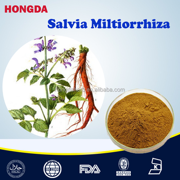 100% natural plant extracts salvia miltiorrhiza extract powder