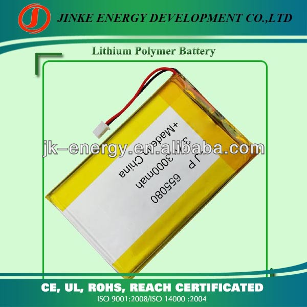cheap 3000mah 3500mah tablet pc battery with High quality