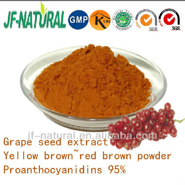 France Grape seed extract outstanding antioxidant