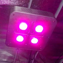 Hydroponic Growth Systems COB Full Spectrum 300W LED Grow Lamps For Plant