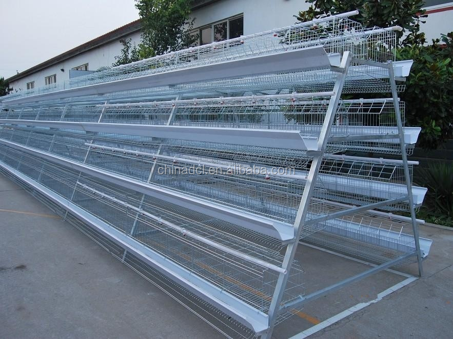 BIRD CAGE poultry farm layer chicken cage
