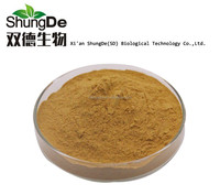 High quality pure natural extract Rehmannia Extract for Radix Rehmanniae Preparata