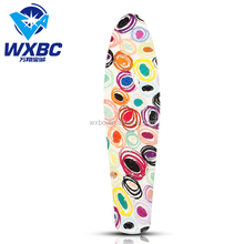 Cheap Price Plastic Skateboard with Aluminum Truck