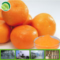 100% Natural freezed dried orange juice powder