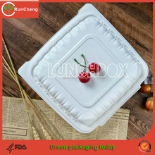 9inch 3 compartment disposable takeout container Biodegradable Environmental lunch box