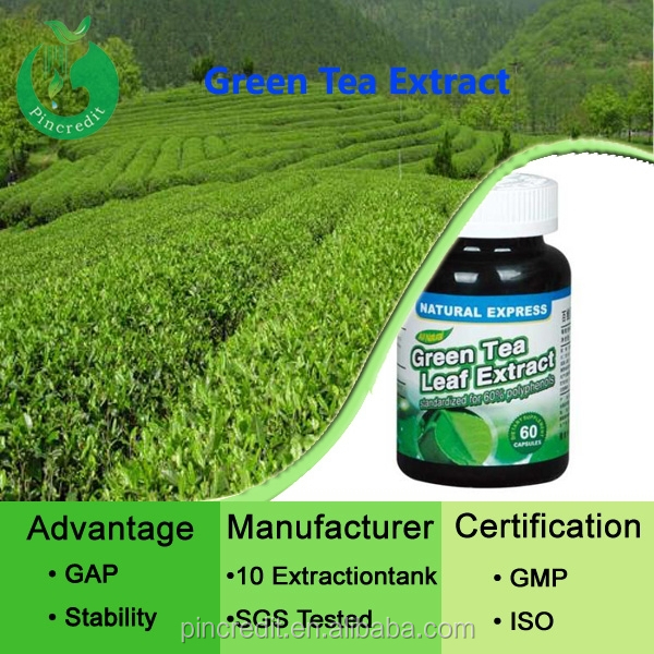 Green Tea Polyphenol Extract bulk 20%-98% . 20%-80% Catechins. 20%-60% EGCG.