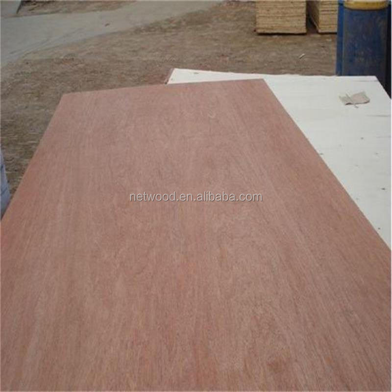 12mm Eo Dynea e1/e2 glue low price okoume/bintangor plywood plywood