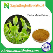 GMP Factory Supply Polyphenol Powder From Yerba Mate Extract Powder