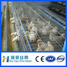 plastic chicken cage for Transport