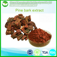 Natural Pine Bark Extract powder Proanthocyanidins 95%