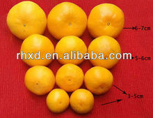 Common Cultivation Type and Fresh Style Fresh Ponkan <strong>Orange</strong>/ Quince Fruits