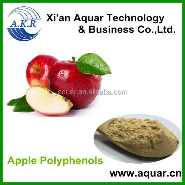 Apple Fruit Extract Powder and organic dried apple powder production line extract bulk in herbalt extract