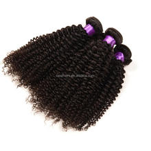Indian Virgin Hair Water Wave 4 Bundle Beauty Indian Curly Virgin Hair Natural Weave Raw Indian Wet Wavy Human Hair