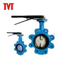 Butterfly Valve Seat Ring Stem Extensions