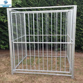 5ft x5ftX6ft hot dip galvanized Jailbreaker square tube Dog Run