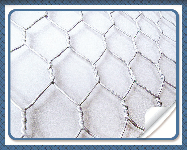 Galvanized Hexagonal Wire Mesh Chicken Net